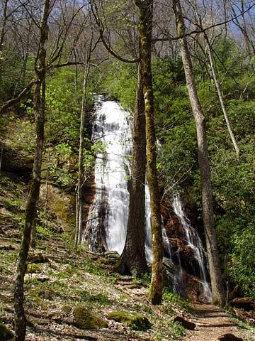 Waterfalls of southwestern north carolina for Morgan falls